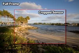 Máy ảnh Full-frame là lựa chọn hàng đầu?