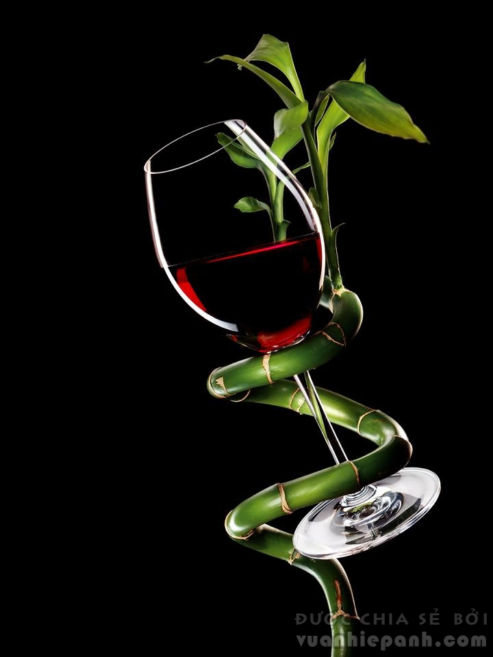 Wine-Glass-bamboo
