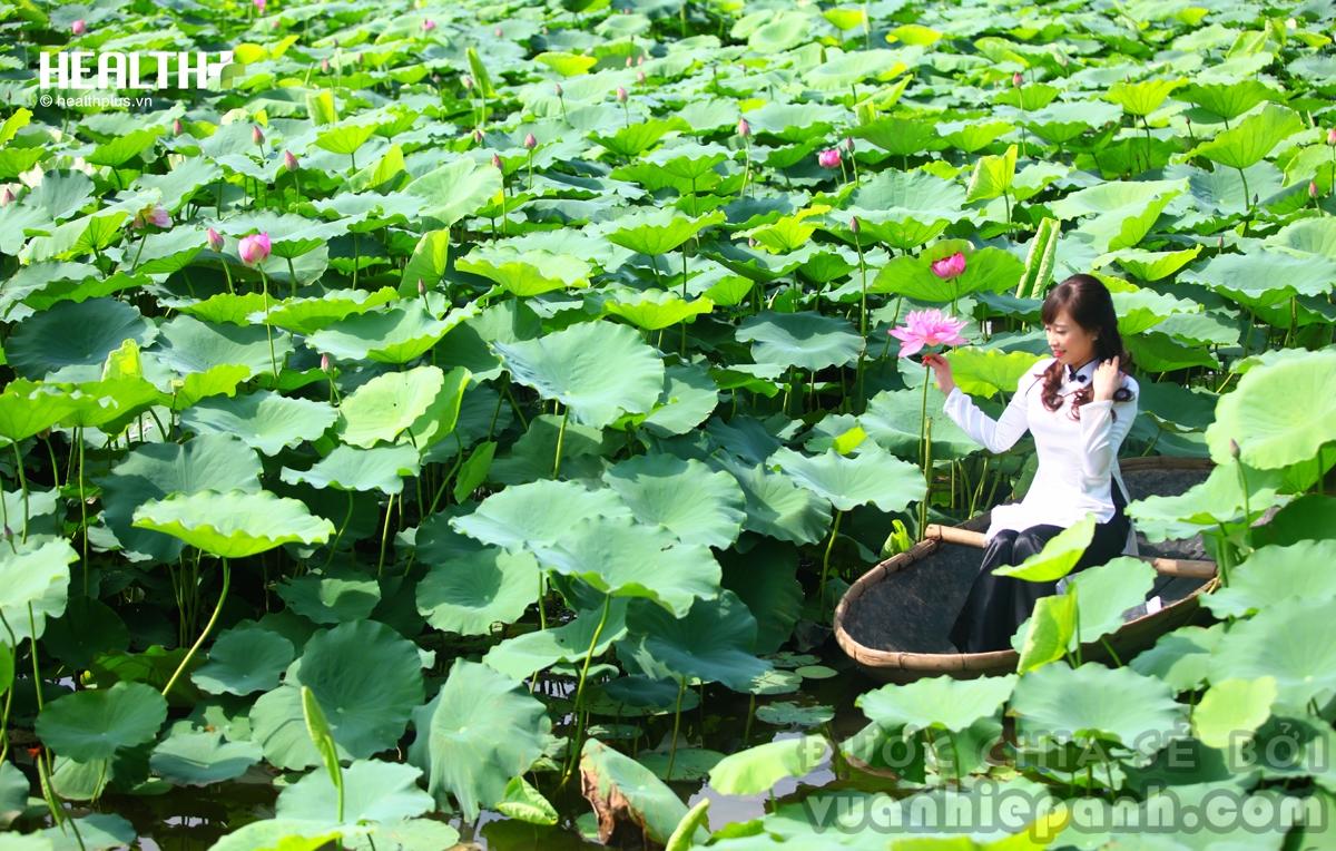 tao-dang-ao-dai