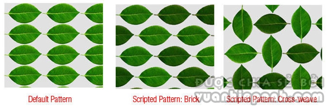 Scripted Patterns
