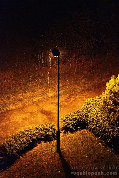 rain16-649586-1370259910_500x0.jpg