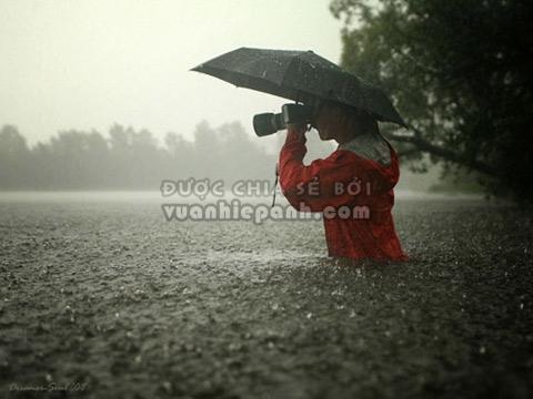 """Kết quả hình ảnh cho ô màu đen để """"che chở""""cho chiếc máy ảnh"""