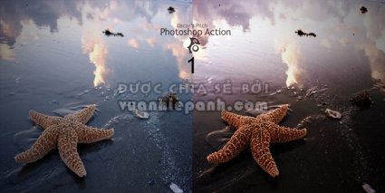 Photoshop Photo Coloring Action
