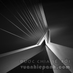 Shape Of Light III - Erasmus Bridge