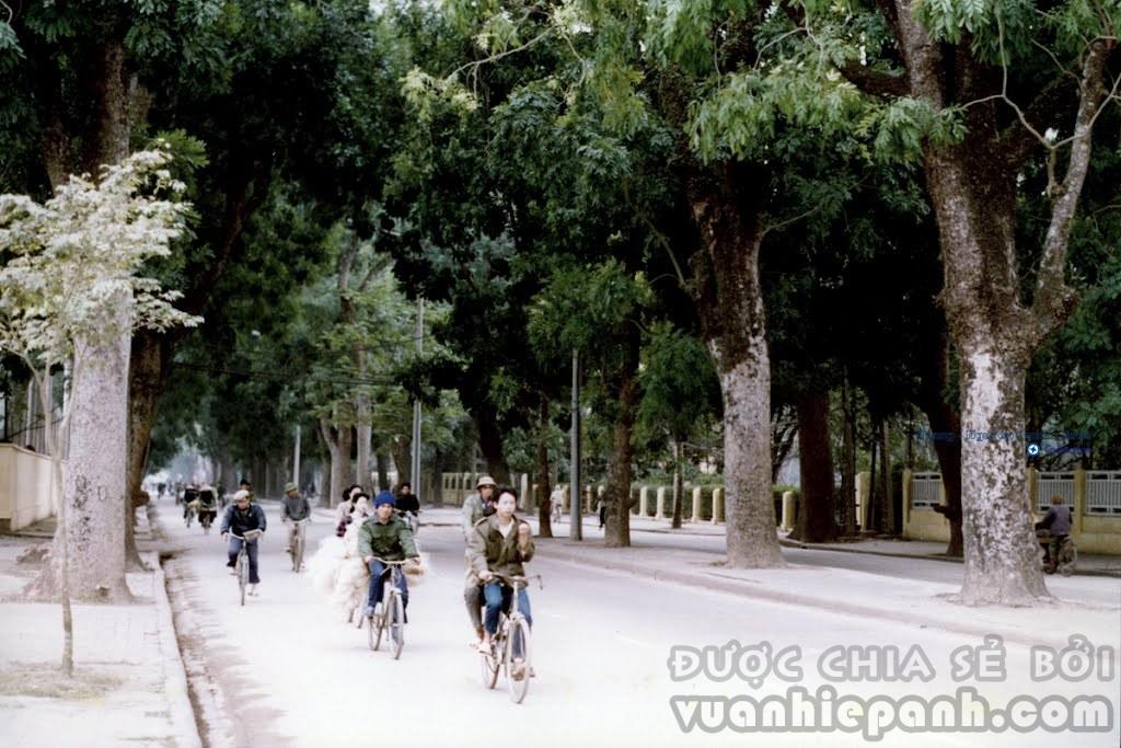 Phố Hoàng Diệu - Hà Nội 1990