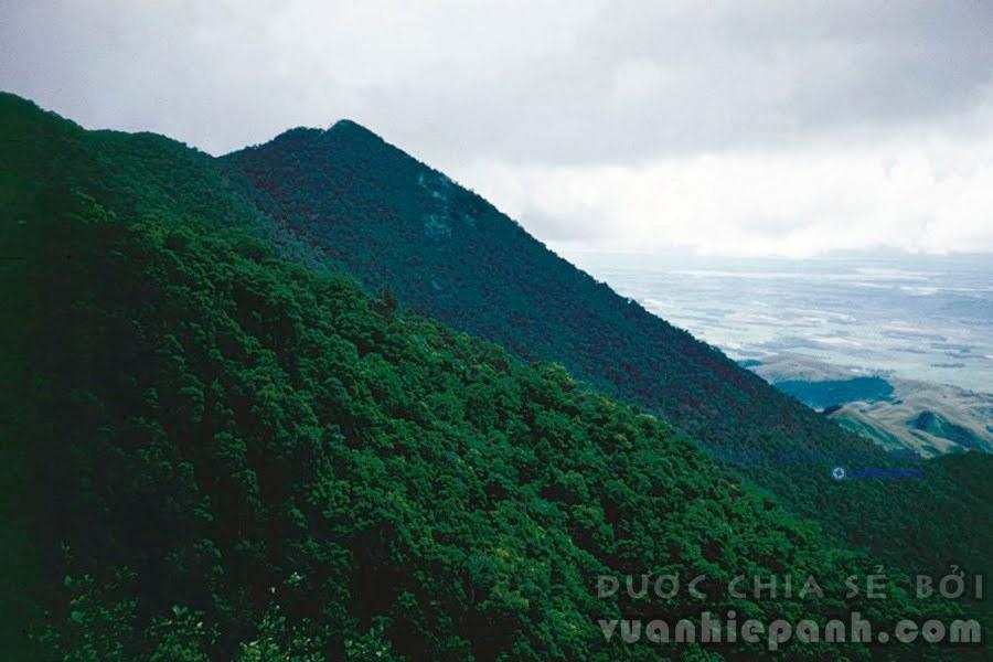 Tam Đảo, Vĩnh Phúc, 1985. Đây là một dãy núi đá ở vùng Đông Bắc Việt Nam nằm trên địa bàn ba tỉnh Vĩnh Phúc, Thái Nguyên và Tuyên Quang. Gọi là Tam Đảo, vì ở đây có ba ngọn núi cao nhô lên trên biển mây, đó là Thạch Bàn, Thiên Thị và Máng Chỉ. Ngọn cao nhất có độ cao tuyệt đối là 1.591m. Ảnh: Imre Villányi