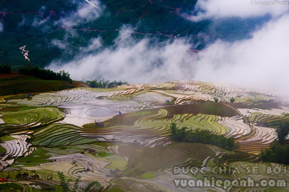 Sa Pa là một thị trấn vùng cao, khu nghỉ mát nổi tiếng thuộc huyện Sa Pa, tỉnh Lào Cai, Việt Nam. Nằm trên một mặt bằng ở độ cao 1500 đến 1650m, thị trấn này có khí hậu mang sắc thái ôn đới và cận nhiệt đới, không khí mát mẻ quanh năm, một ngày có đủ bốn mùa. Nhiệt độ không khí trung bình năm của Sa Pa là 15 °C, nhiệt độ cao nhất mùa hè là 25 độ C, mùa đông có thể dưới 0 độ C và có tuyết rơi.