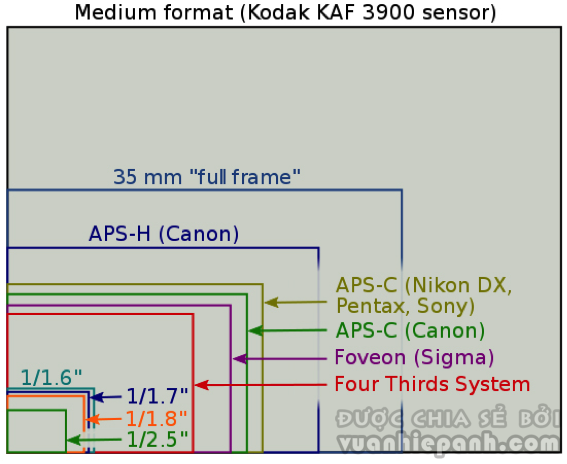 Những chiếc máy ảnh Full-Frame luôn là lựa chọn của các nhiếp ảnh gia.