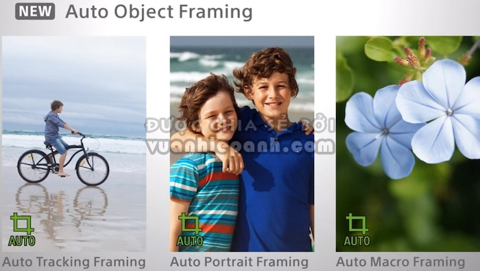 auto_object_framing.